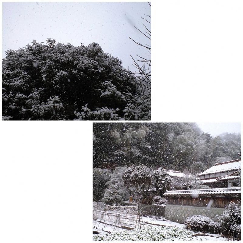 田舎の雪景色