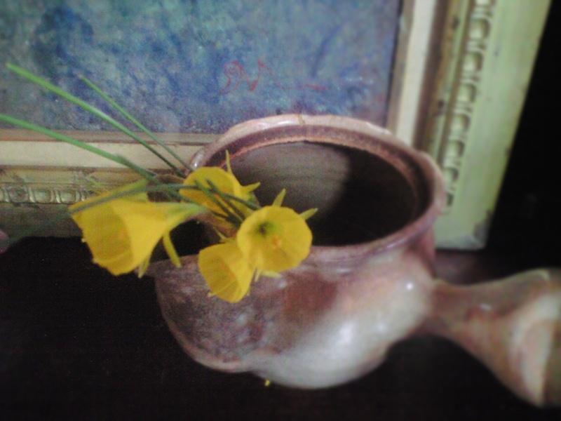 ペチコート水仙
