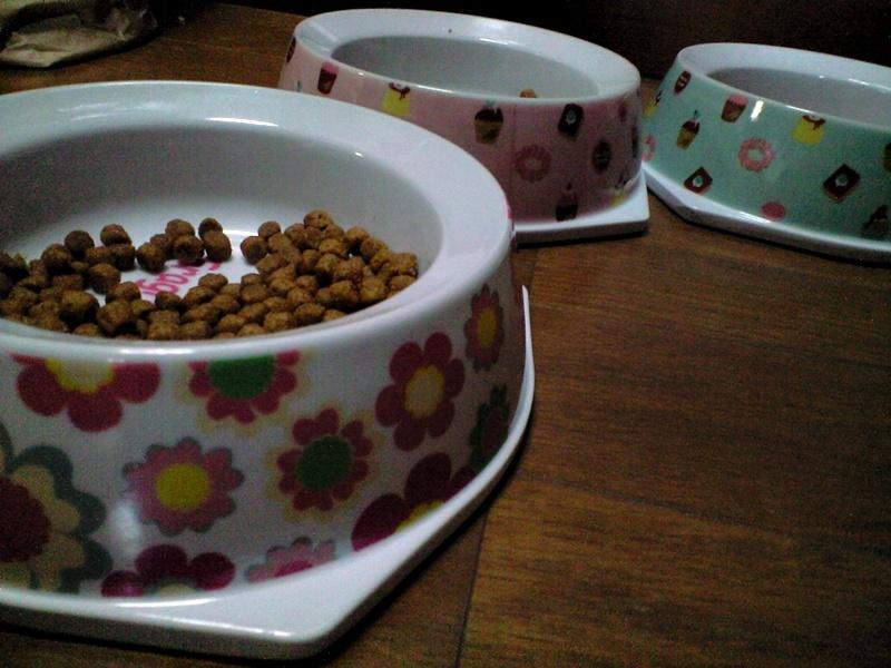かわゆい猫用食器。