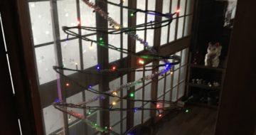 イルミネーションでクリスマスツリー