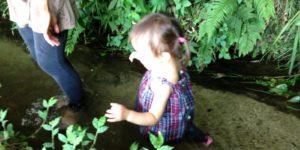 縷々、小川を歩く。