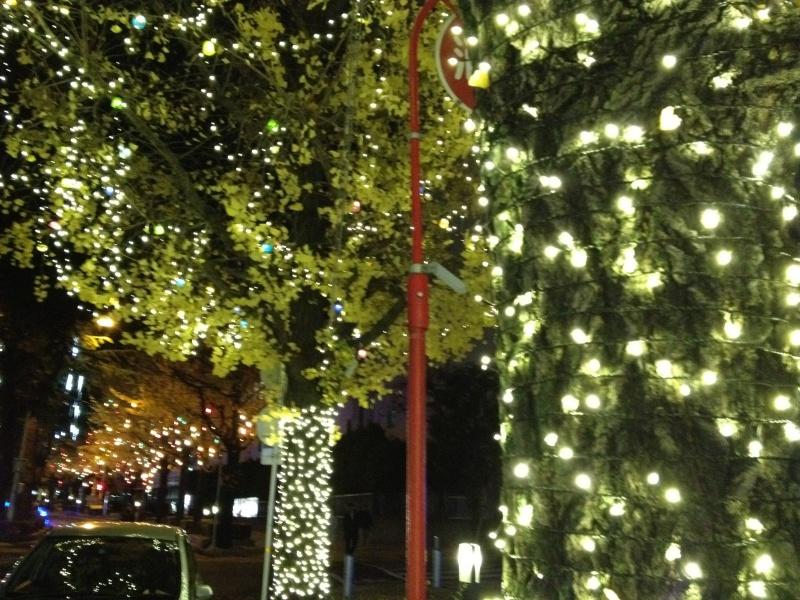 御幸通りクリスマスツリーデコレーション