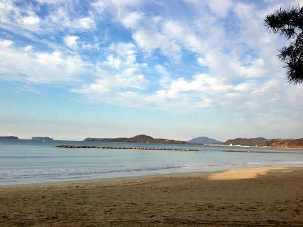 萩の海その2