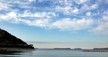 萩の海その5