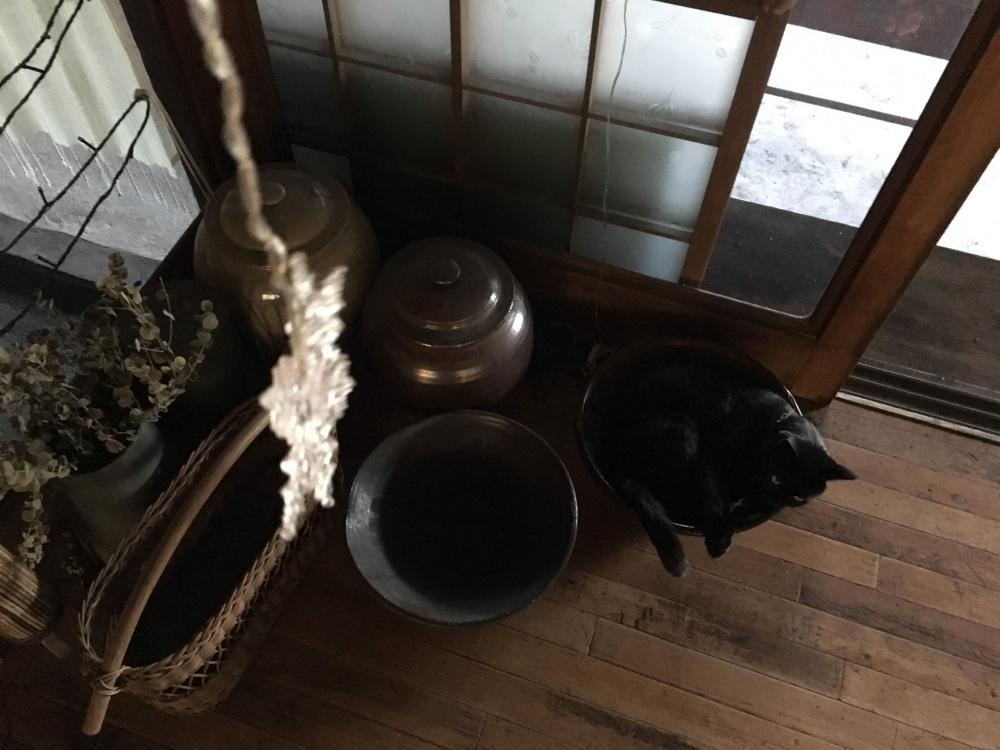 うららinすり鉢