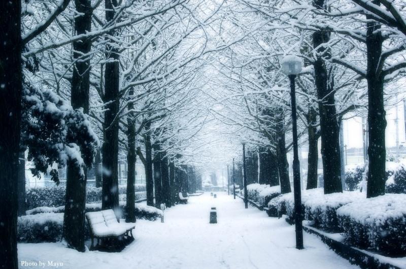 Freezing February