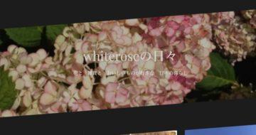 roseのブログ