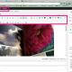 WordPressのダッシュボードやadminバーのアイコンが表示されない!?